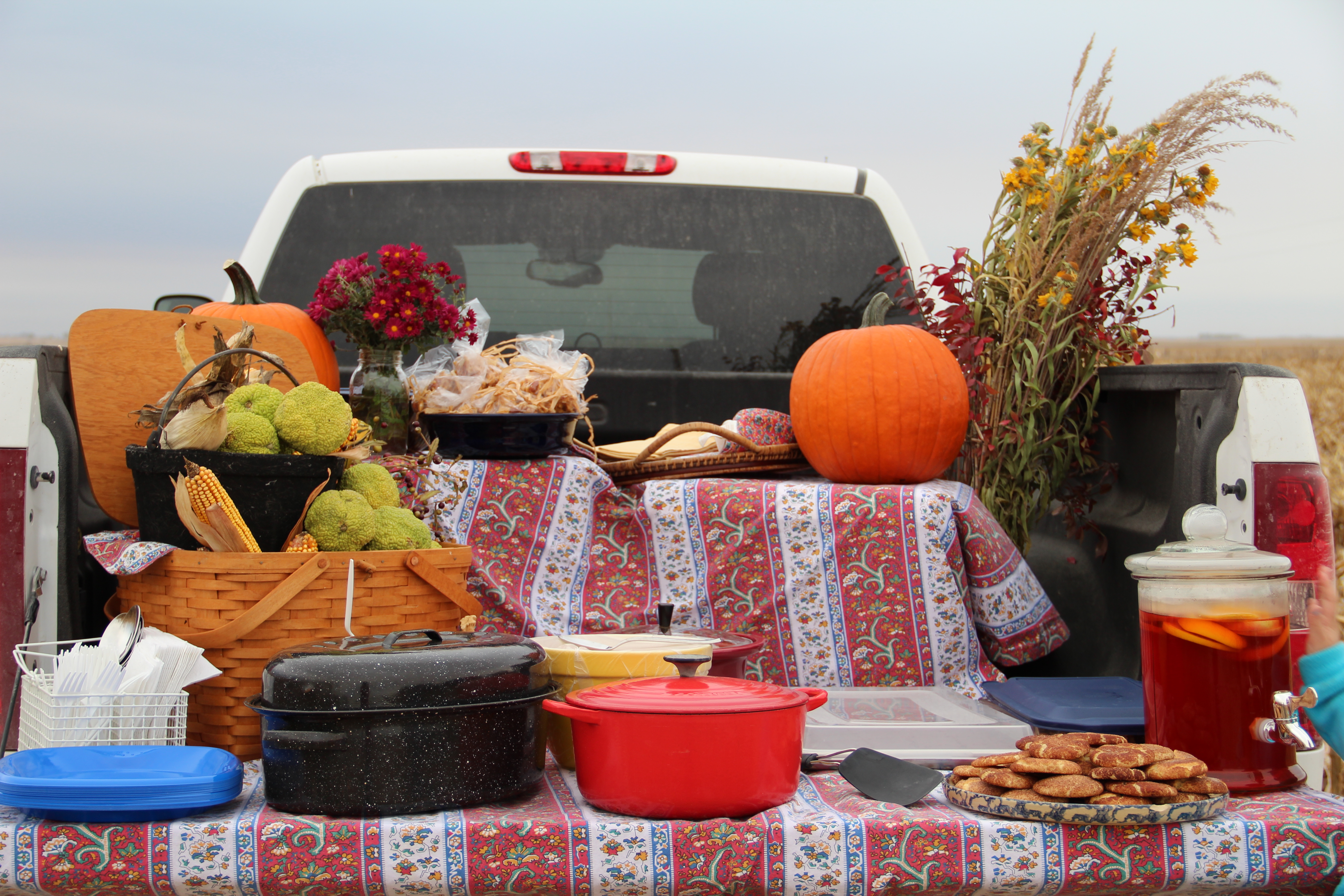 Field Tailgating Party