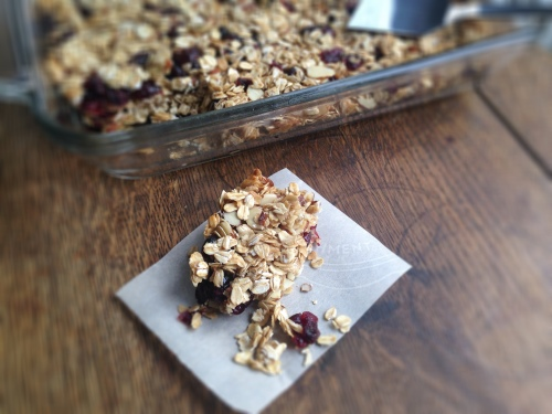 Cranberry Oatmeal Granola Bars- chewy, salty, and sweet