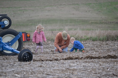 Checking each row planted to see if the seeds are in the ground and so far apart. Yep! They are!