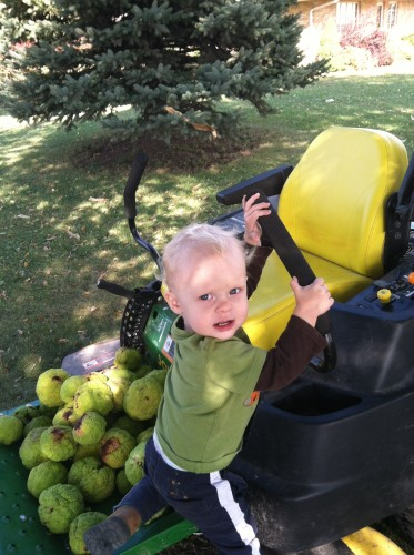What John was really interested in was to drive the lawn mower!