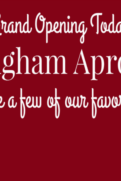 Introducing…The Gingham Apron SHOP!!!